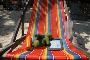 My demon hare had a good time, reading ebooks and sunbathing :-)